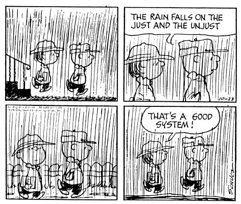 Peanuts rain